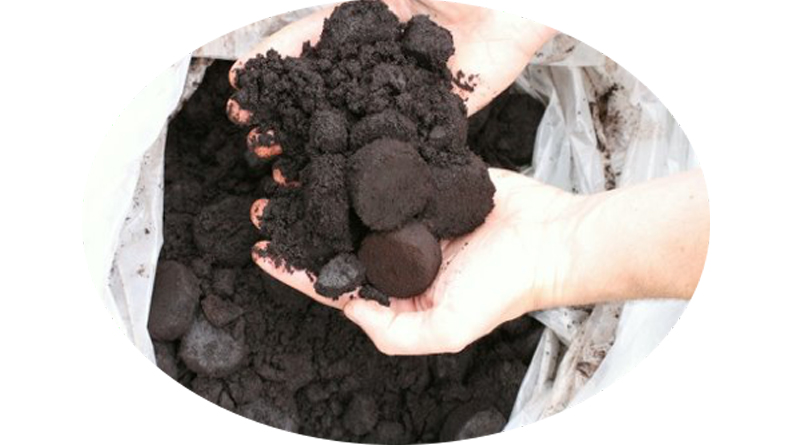 Fibra dietética de los residuos del café, atractivo ingrediente