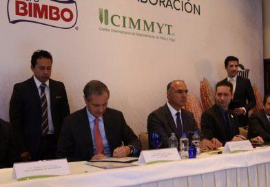 Grupo Bimbo y el CIMMYT impulsarán el abastecimiento responsable de trigo y maíz