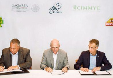 Gruma y CIMMYT firman acuerdo para potenciar la productividad del campo mexicano