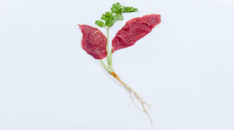 Nueva forma de crear carne 'no cárnica': con tecnología 3D