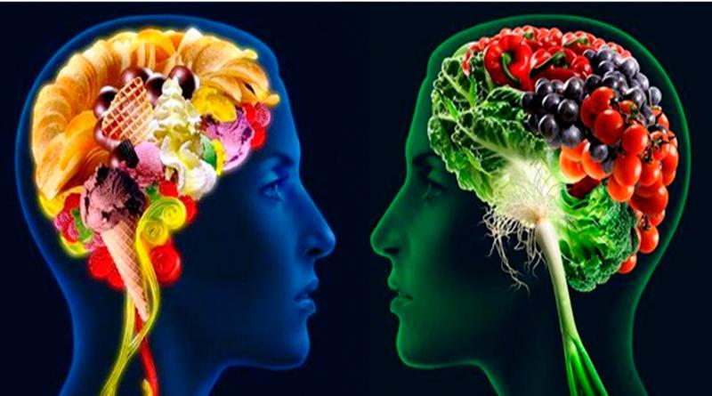 El cerebro y su papel en las decisiones alimenticias individuales