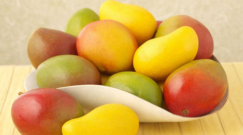 Crean bioplástico a base de cáscara de mango con propiedades similares a los PET